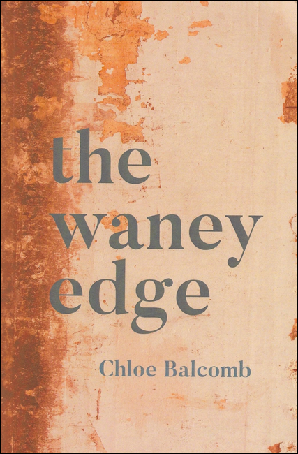 The jacket has an orangey background, textured to look like water stained leather, dark orange at the left hand side and then much lighter after the first inch or so in, but with mottled marks. The name of the pamphlet is in giant lower case letters, with no capitals, one word per line and it takes up about half the jacket, though placed roughly in the middle and left-justified. The author's name, with first letter caps, is positioned below this, very much smaller and right justified. The text is dark grey.