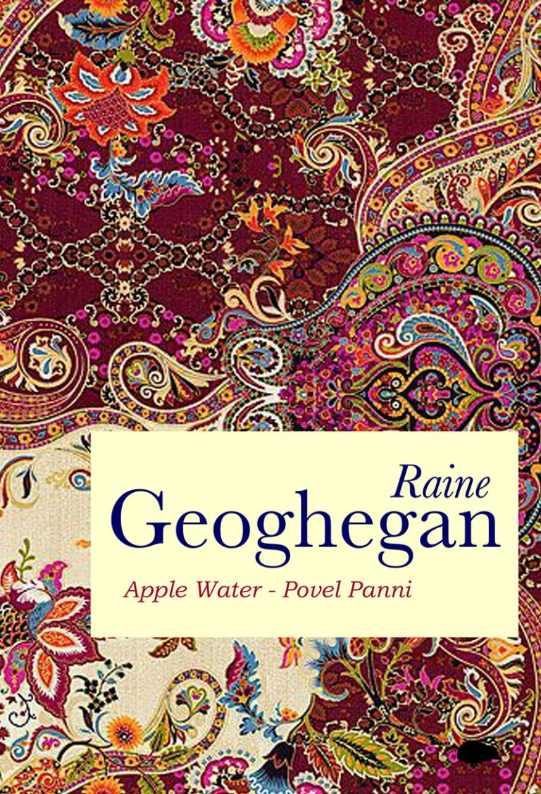 The jacket is covered in a swirling full colour design featuring flowers and paisley-type shapes on a dark red background with yellows, oranges and blue. There is a cream box placed two thirds of the way down and to the right, inside which the surname of the poet appears in huge lower case (dark blue). Above this, justifed right is her first name (Raine) in small italics. Below the surname is the name of the pamphlet in even smaller red italics.