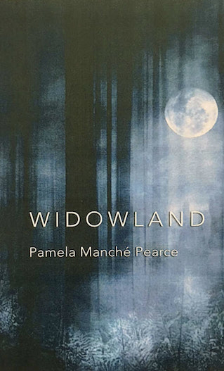 The cover holds a large murky picture, perhaps a painting, of a wood at night, with a full moon and moonlight seeping through the trees into a sort of blur in the foreground. The title is centred about two thirds down and is in sans serif caps, white. Not huge but big enough to occupy most of the width of the pamphlet which is a little taller and thinner than A5 by the look of it. The author's name is in white lower case font below this, quite a bit smaller. No other text on the cover.
